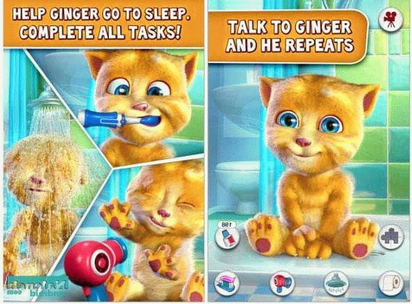Скачать Talking Ginger для android бесплатно